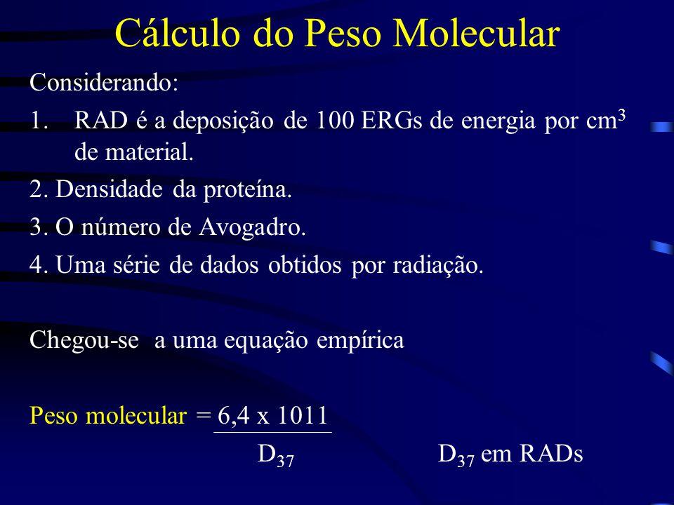 Cálculo do Peso Molecular