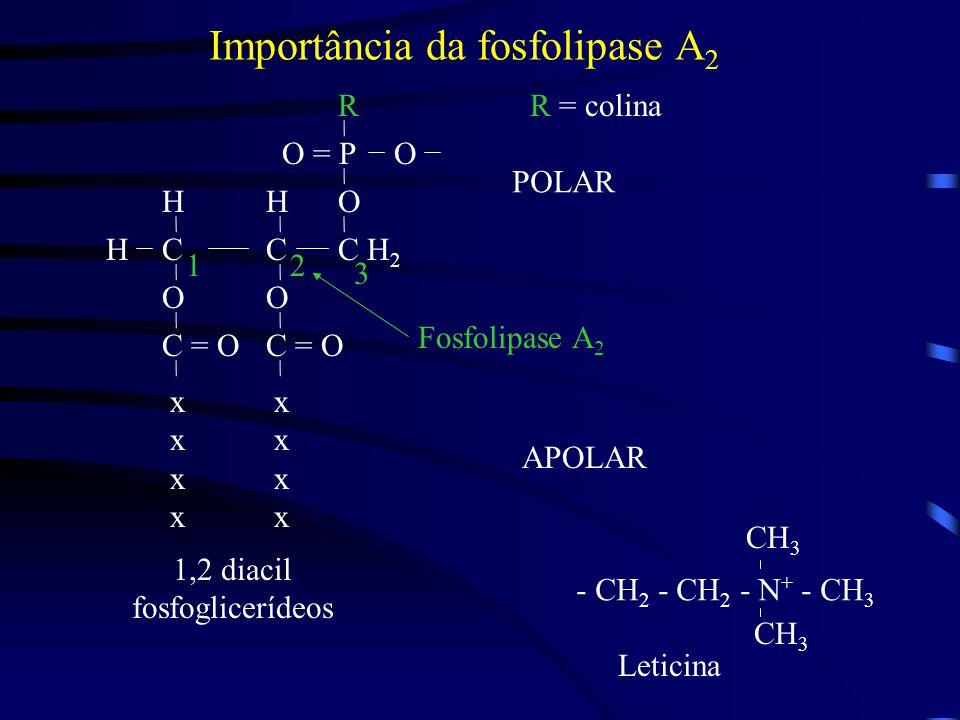 Importância da fosfolipase A2