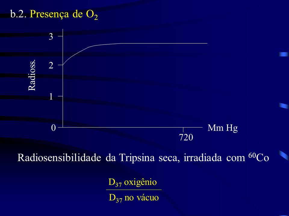 Radiosensibilidade da Tripsina seca, irradiada com 60Co