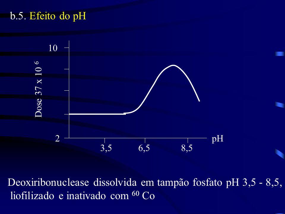 Deoxiribonuclease dissolvida em tampão fosfato pH 3,5 - 8,5,