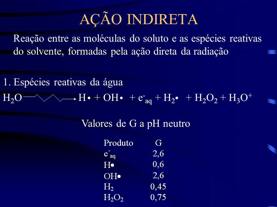 AÇÃO INDIRETA Reação entre as moléculas do soluto e as espécies reativas do solvente, formadas pela ação direta da radiação.