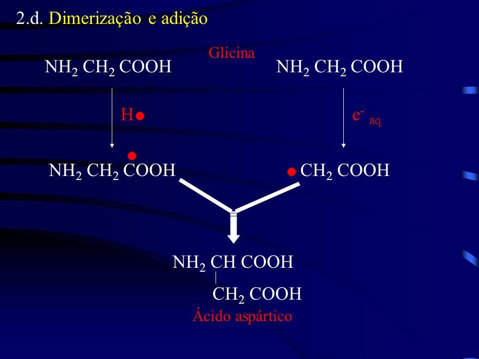 2.d. Dimerização e adição NH2 CH2 COOH NH2 CH2 COOH H e- aq