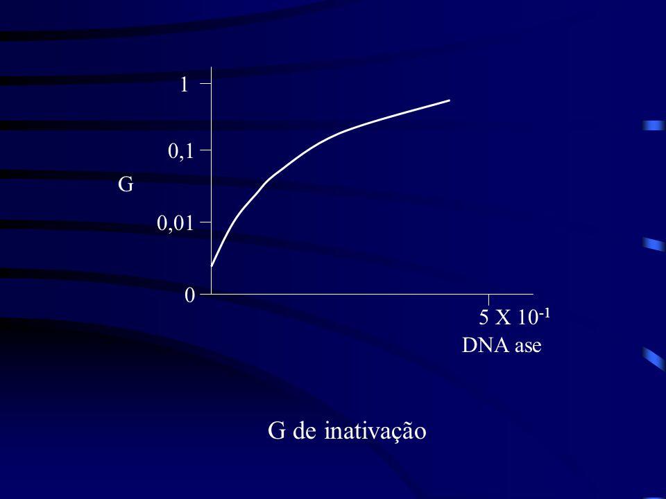 1 0,1 G 0,01 5 X 10-1 DNA ase G de inativação