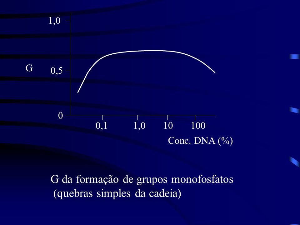 G da formação de grupos monofosfatos (quebras simples da cadeia)