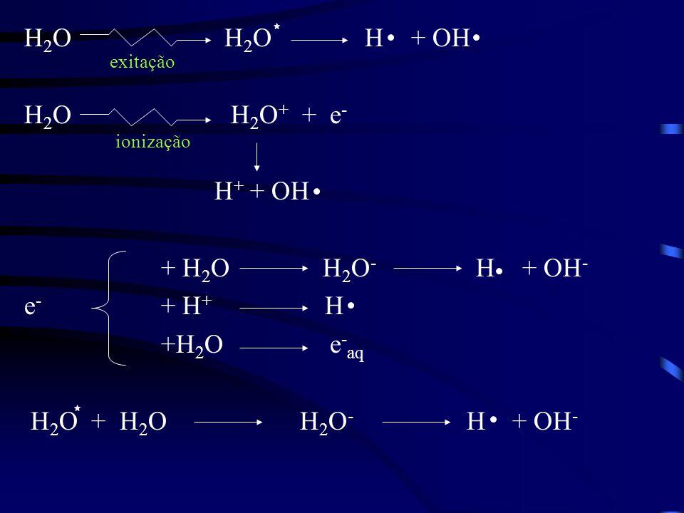 H2O H2O H + OH H2O H2O+ + e- H+ + OH + H2O H2O- H + OH- e- + H+ H