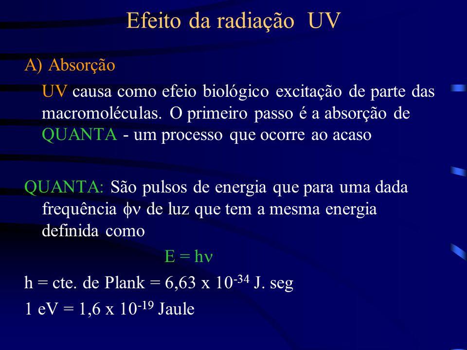 Efeito da radiação UV A) Absorção