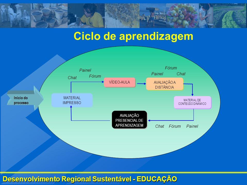 Ciclo de aprendizagem Fórum Painel Painel Chat Chat Fórum VÍDEO-AULA
