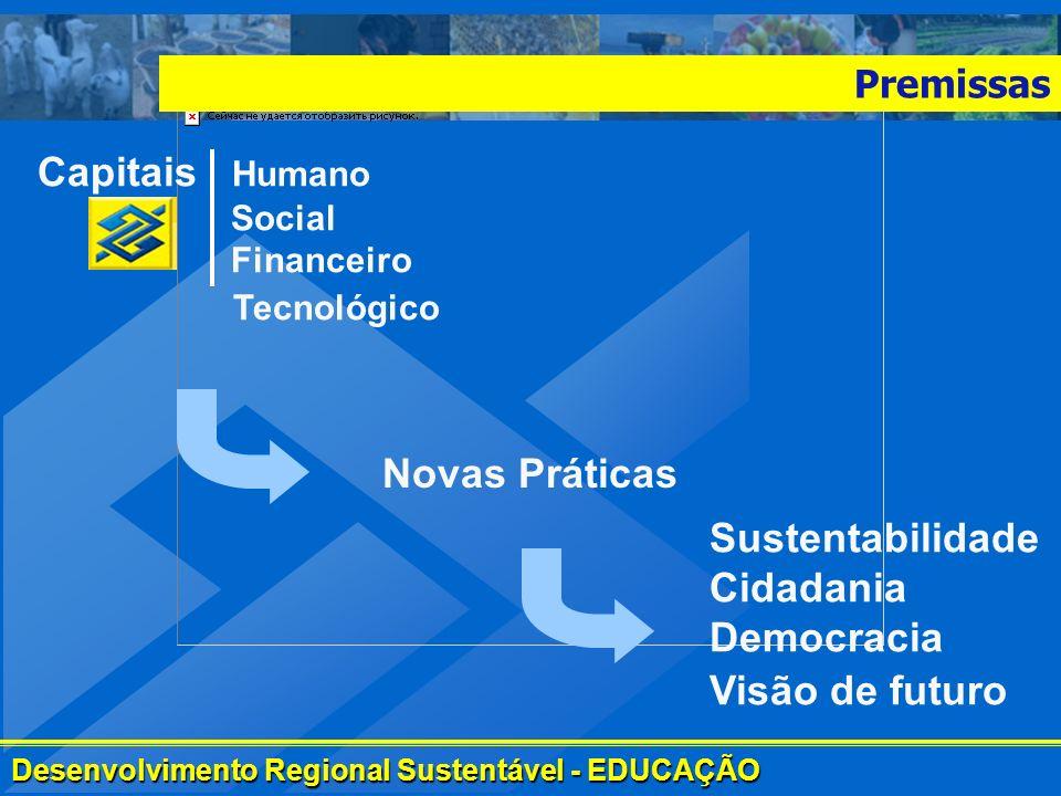 Capitais Humano Social Financeiro