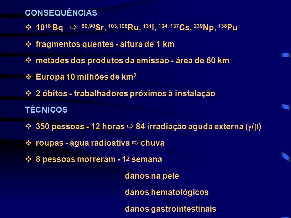 CONSEQUÊNCIAS 1018 Bq  89,90Sr, 103,106Ru, 131I, 134, 137Cs, 239Np, 138Pu. fragmentos quentes - altura de 1 km.
