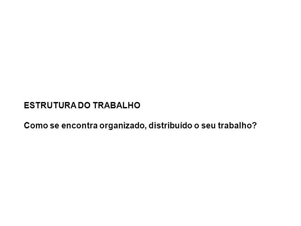 ESTRUTURA DO TRABALHO Como se encontra organizado, distribuído o seu trabalho