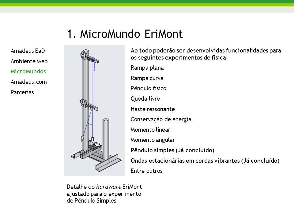 1. MicroMundo EriMont Amadeus EaD