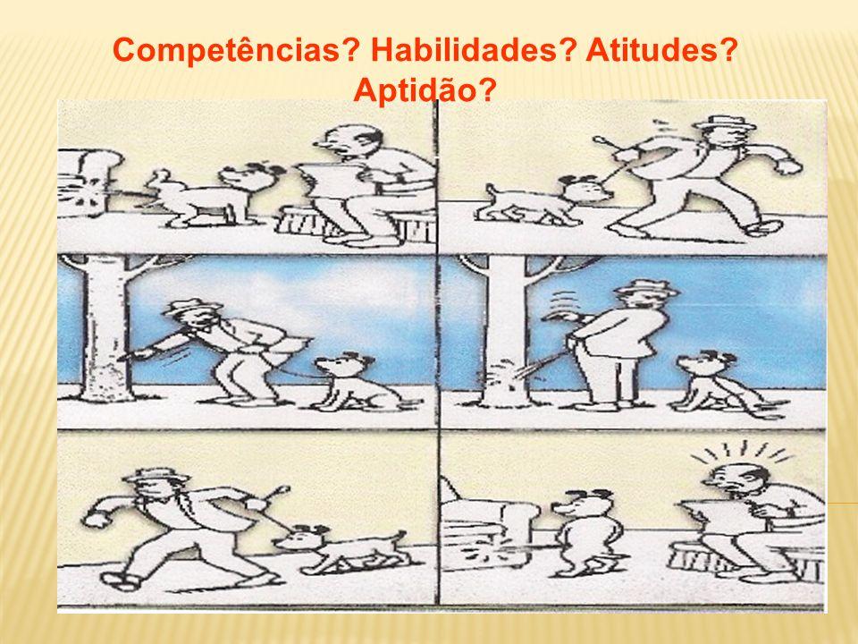 Competências Habilidades Atitudes Aptidão