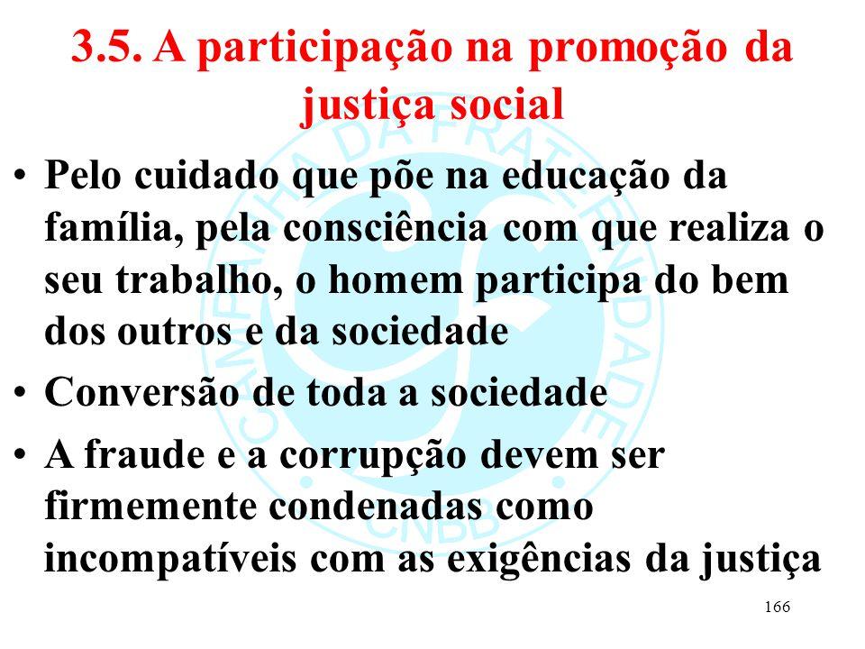 3.5. A participação na promoção da justiça social