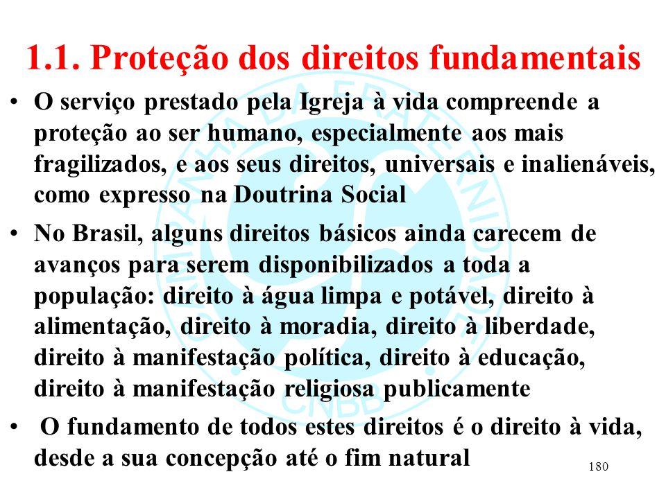 1.1. Proteção dos direitos fundamentais