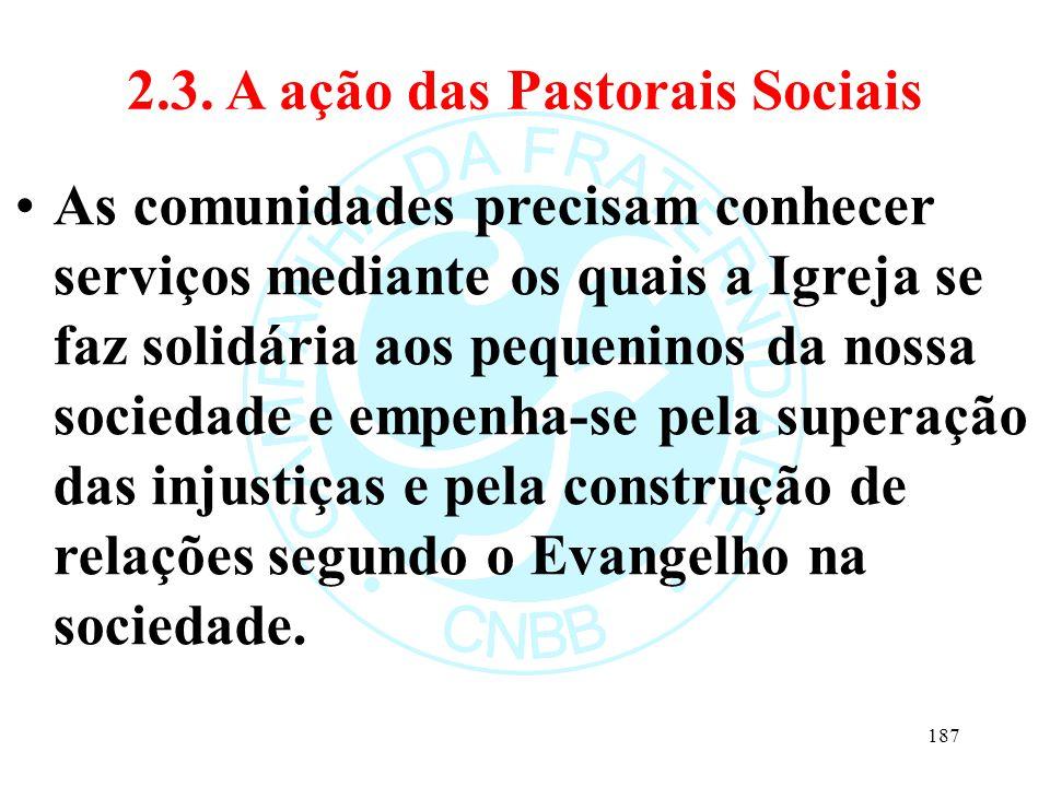 2.3. A ação das Pastorais Sociais