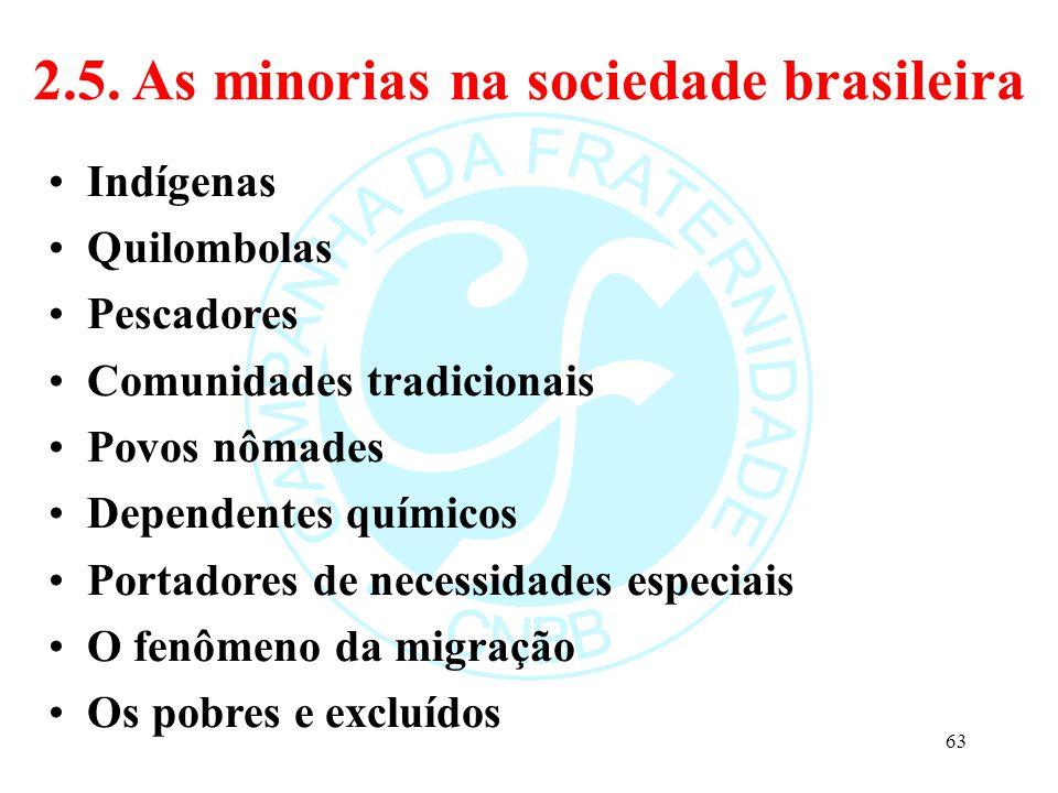 2.5. As minorias na sociedade brasileira