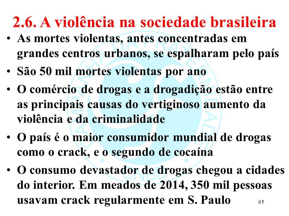 2.6. A violência na sociedade brasileira