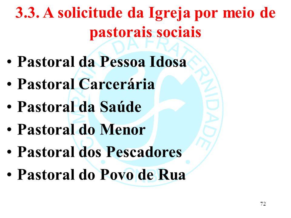 3.3. A solicitude da Igreja por meio de pastorais sociais