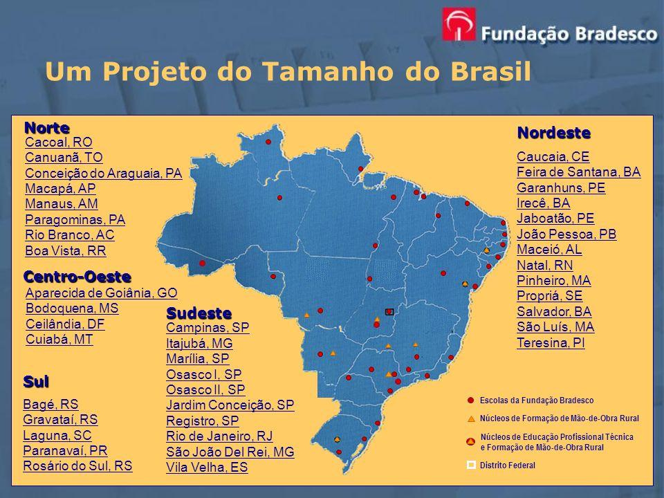 Um Projeto do Tamanho do Brasil