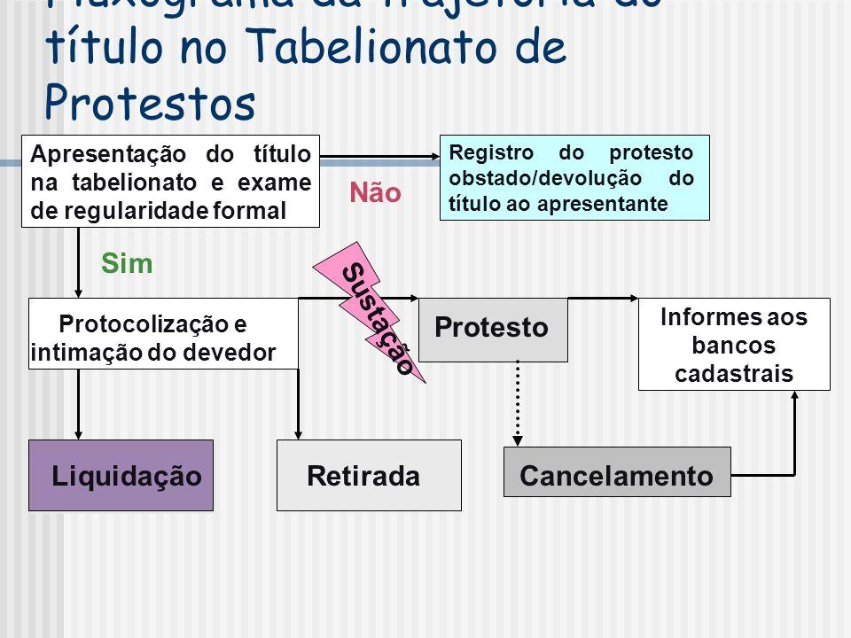 Fluxograma da trajetória do título no Tabelionato de Protestos