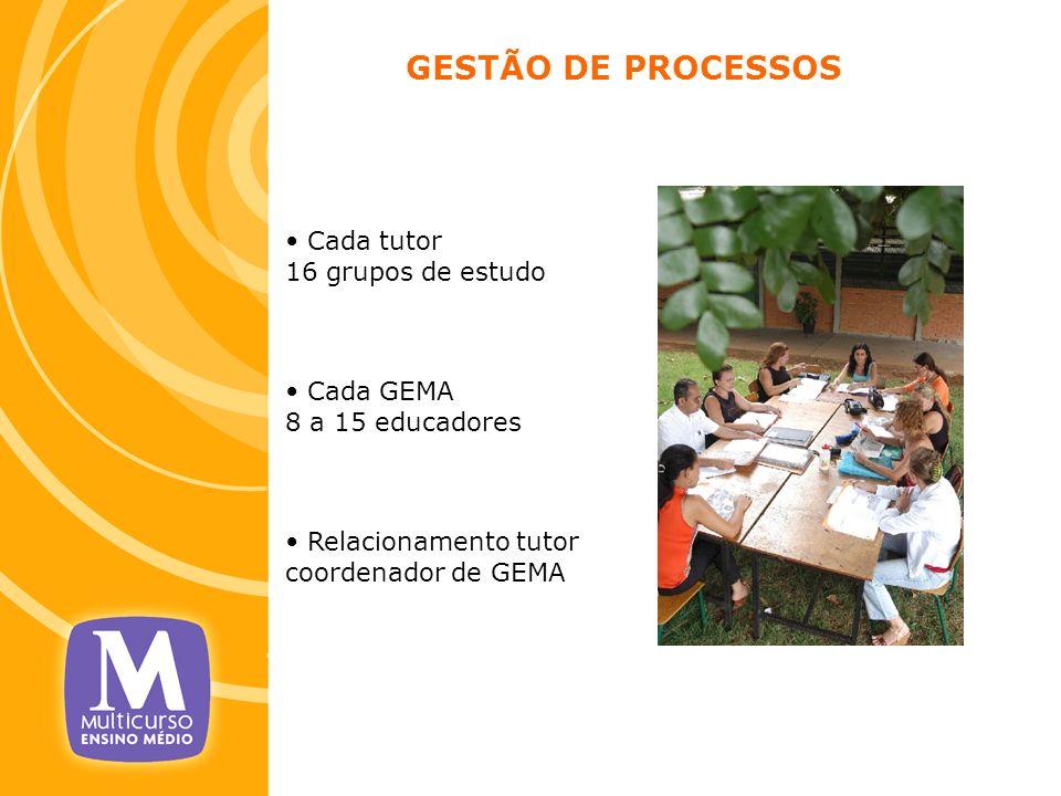 GESTÃO DE PROCESSOS Cada tutor 16 grupos de estudo