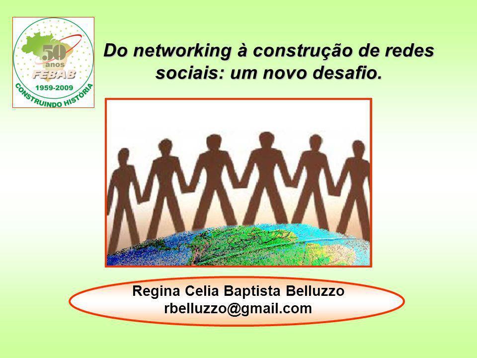 Do networking à construção de redes sociais: um novo desafio.