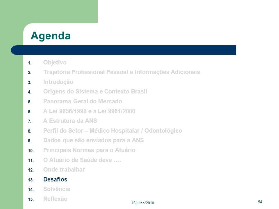Agenda Objetivo. Trajetória Profissional Pessoal e Informações Adicionais. Introdução. Origens do Sistema e Contexto Brasil.