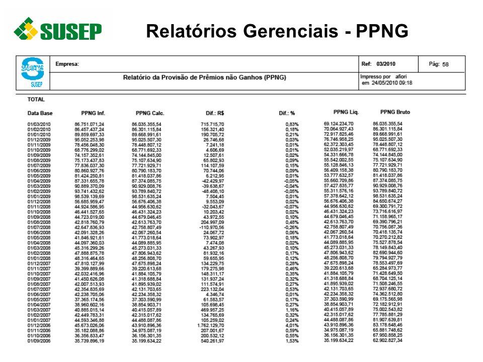 Relatórios Gerenciais - PPNG