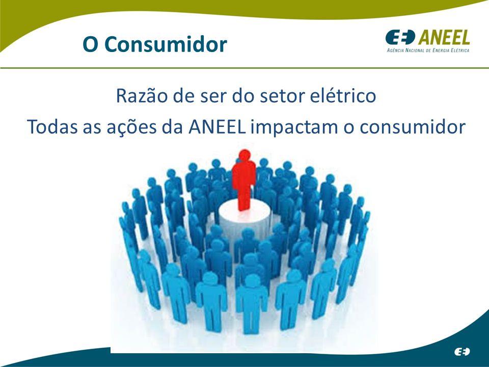 O Consumidor Razão de ser do setor elétrico
