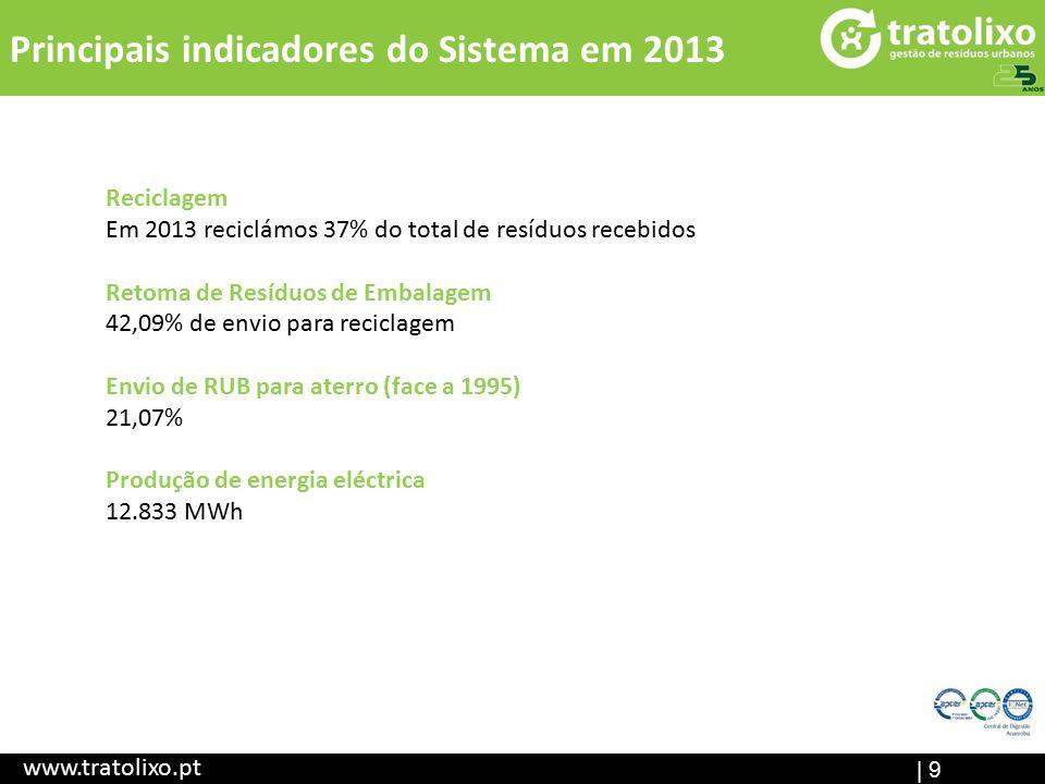 Principais indicadores do Sistema em 2013