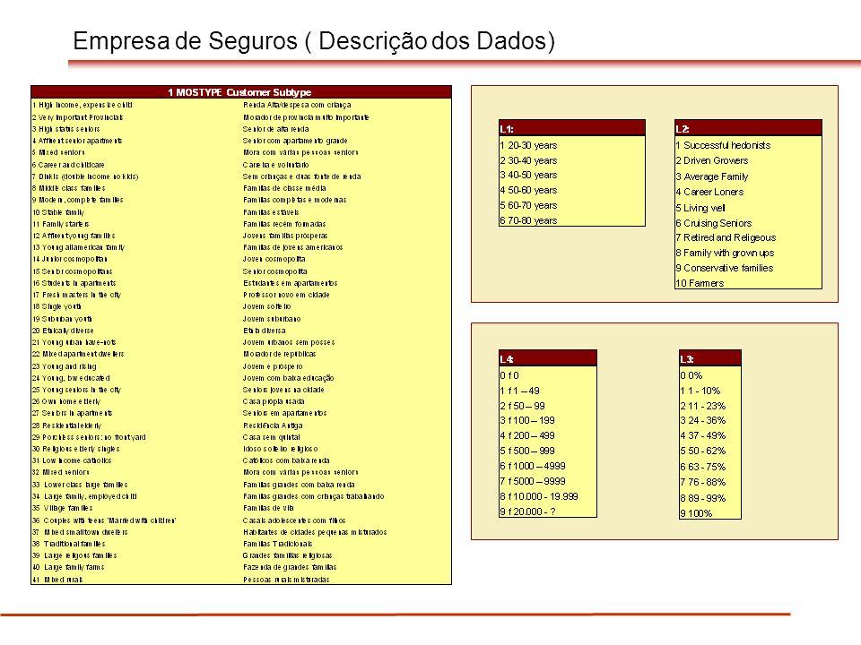 Empresa de Seguros ( Descrição dos Dados)