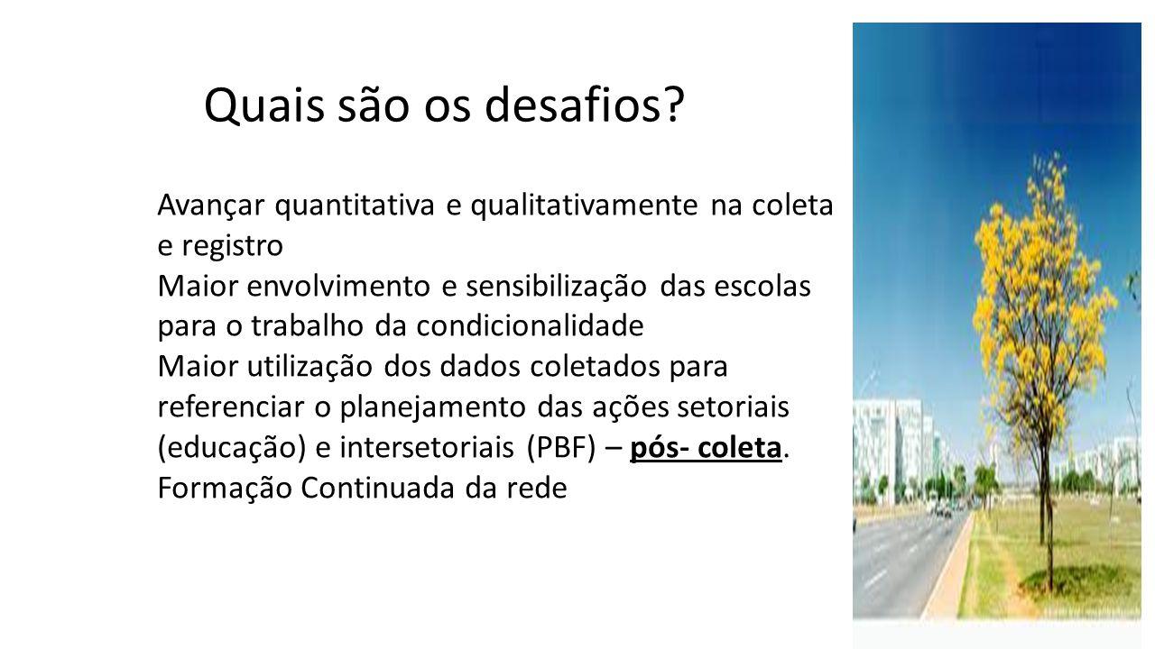 Quais são os desafios Avançar quantitativa e qualitativamente na coleta e registro.