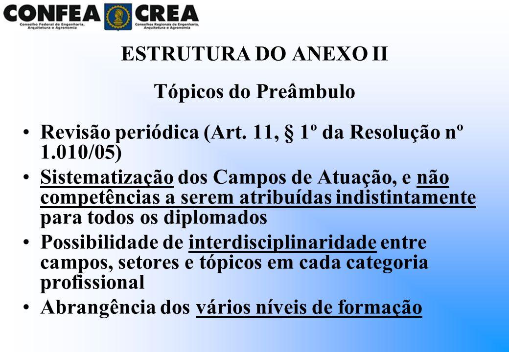 ESTRUTURA DO ANEXO II Tópicos do Preâmbulo. Revisão periódica (Art. 11, § 1º da Resolução nº 1.010/05)