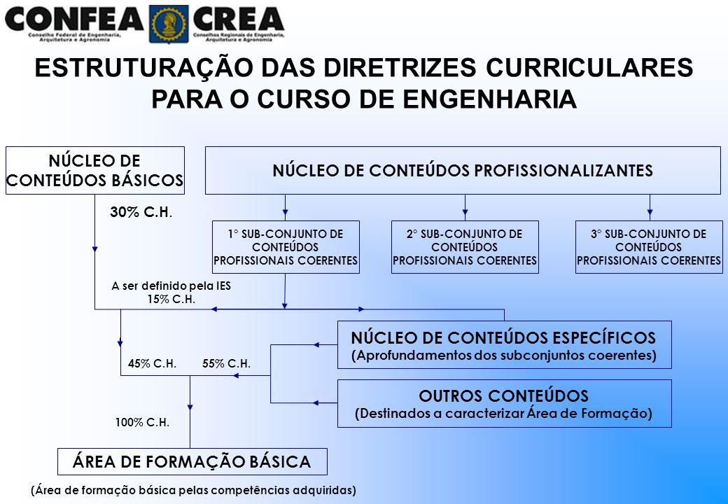 ESTRUTURAÇÃO DAS DIRETRIZES CURRICULARES PARA O CURSO DE ENGENHARIA