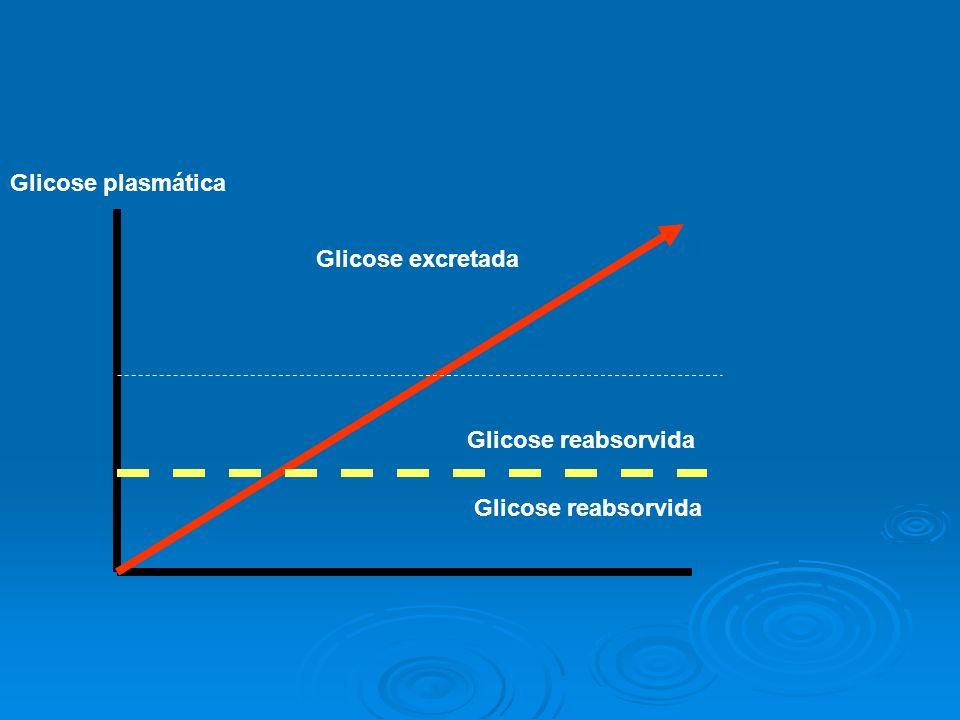 Glicose plasmática Glicose excretada Glicose reabsorvida Glicose reabsorvida