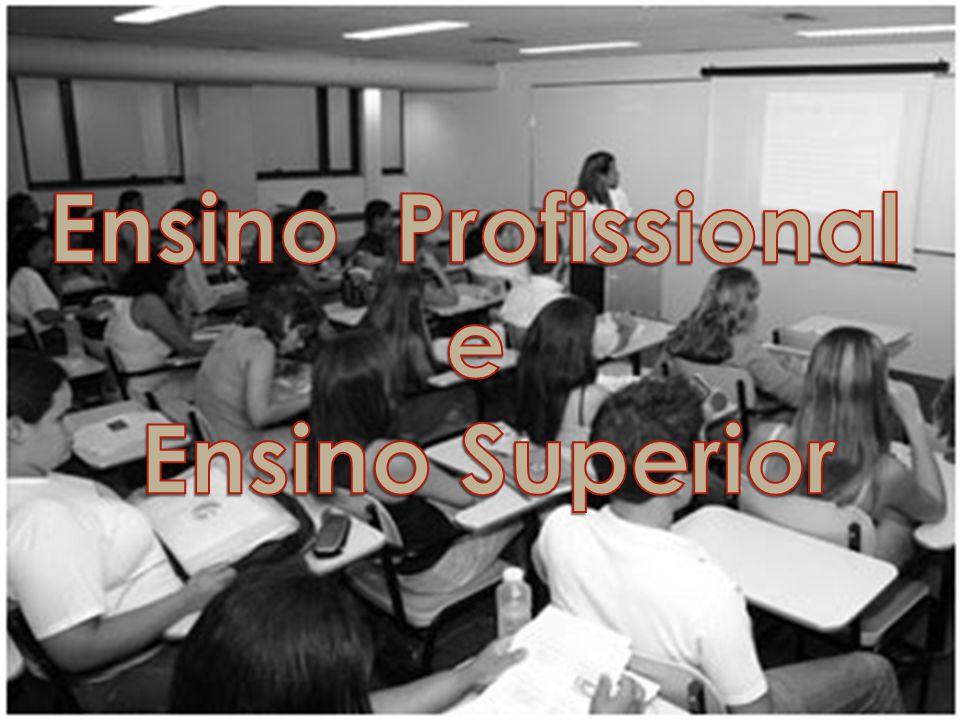 Ensino Profissional e Ensino Superior