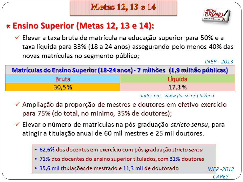 Ensino Superior (Metas 12, 13 e 14):
