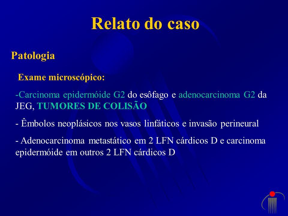 Relato do caso Patologia Exame microscópico: