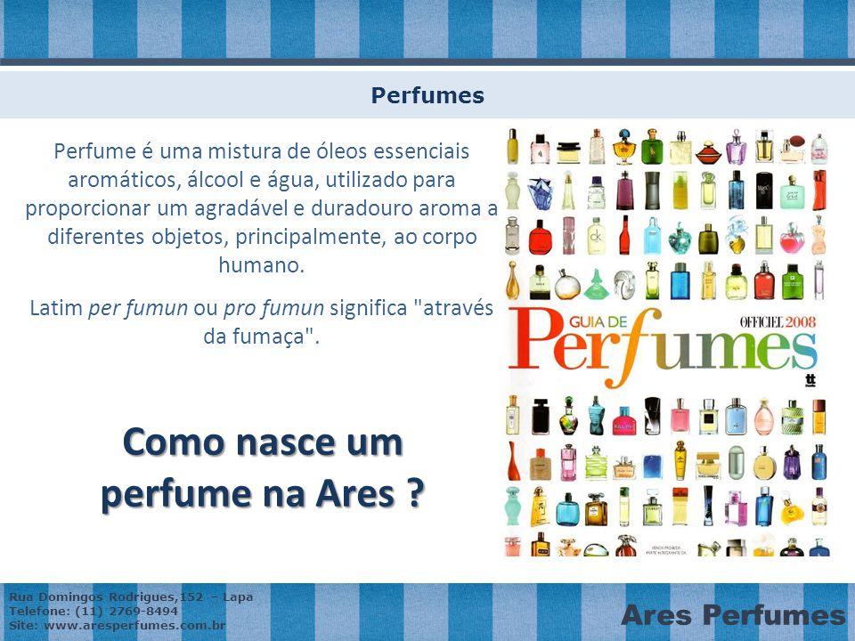 Como nasce um perfume na Ares