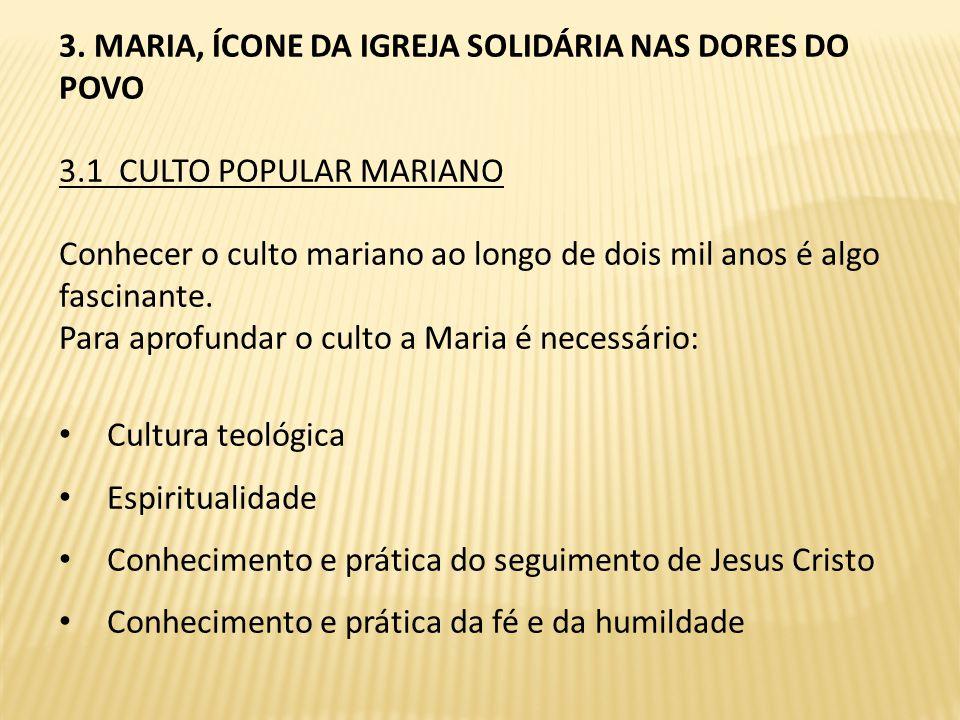 3. MARIA, ÍCONE DA IGREJA SOLIDÁRIA NAS DORES DO POVO
