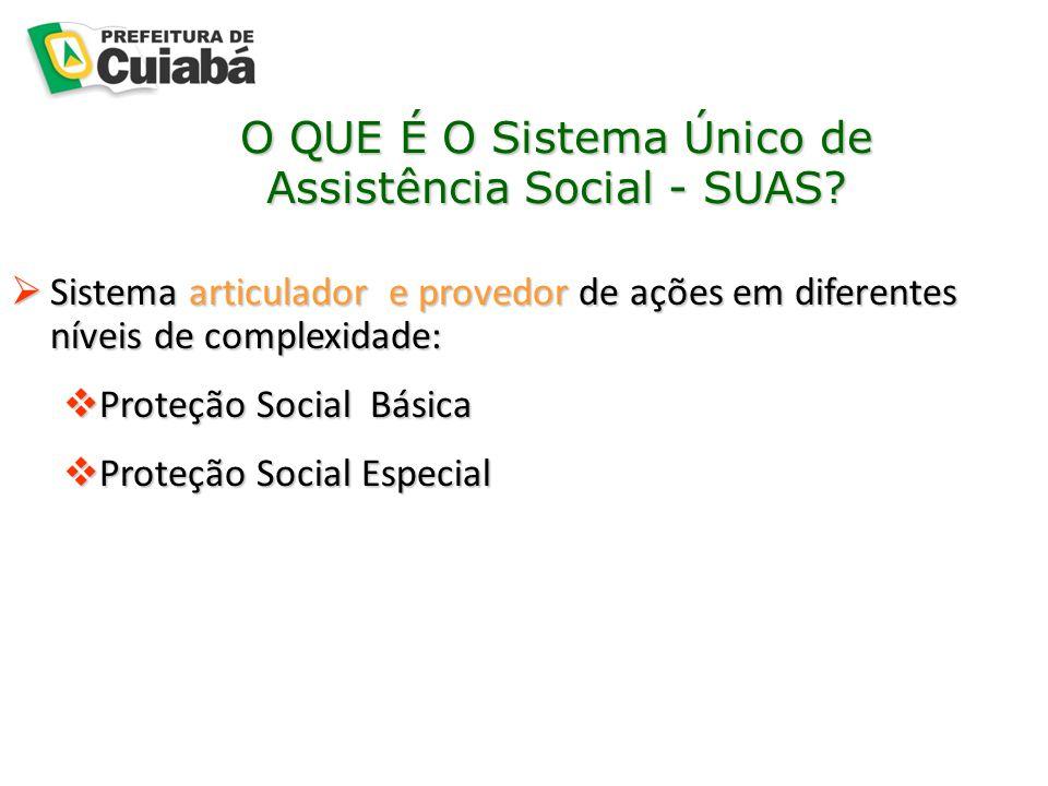 O QUE É O Sistema Único de Assistência Social - SUAS