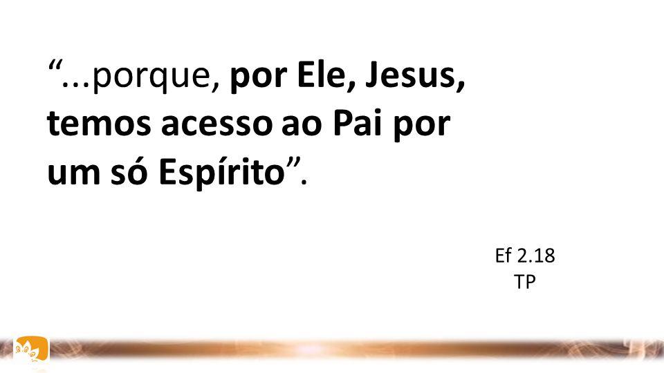 ...porque, por Ele, Jesus, temos acesso ao Pai por um só Espírito .