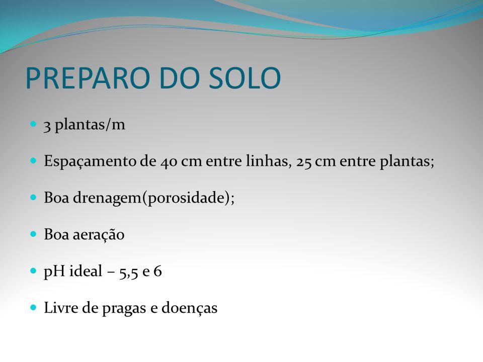 PREPARO DO SOLO 3 plantas/m