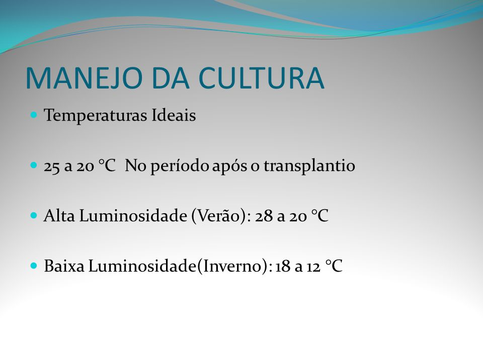MANEJO DA CULTURA Temperaturas Ideais