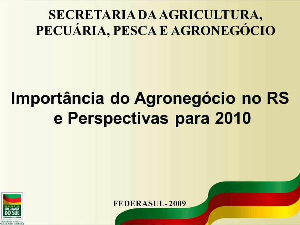 Importância do Agronegócio no RS e Perspectivas para 2010