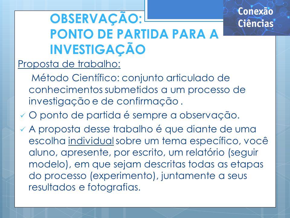 OBSERVAÇÃO: PONTO DE PARTIDA PARA A INVESTIGAÇÃO