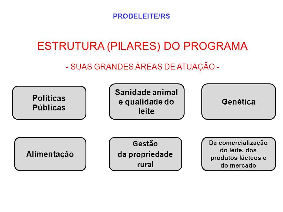 ESTRUTURA (PILARES) DO PROGRAMA