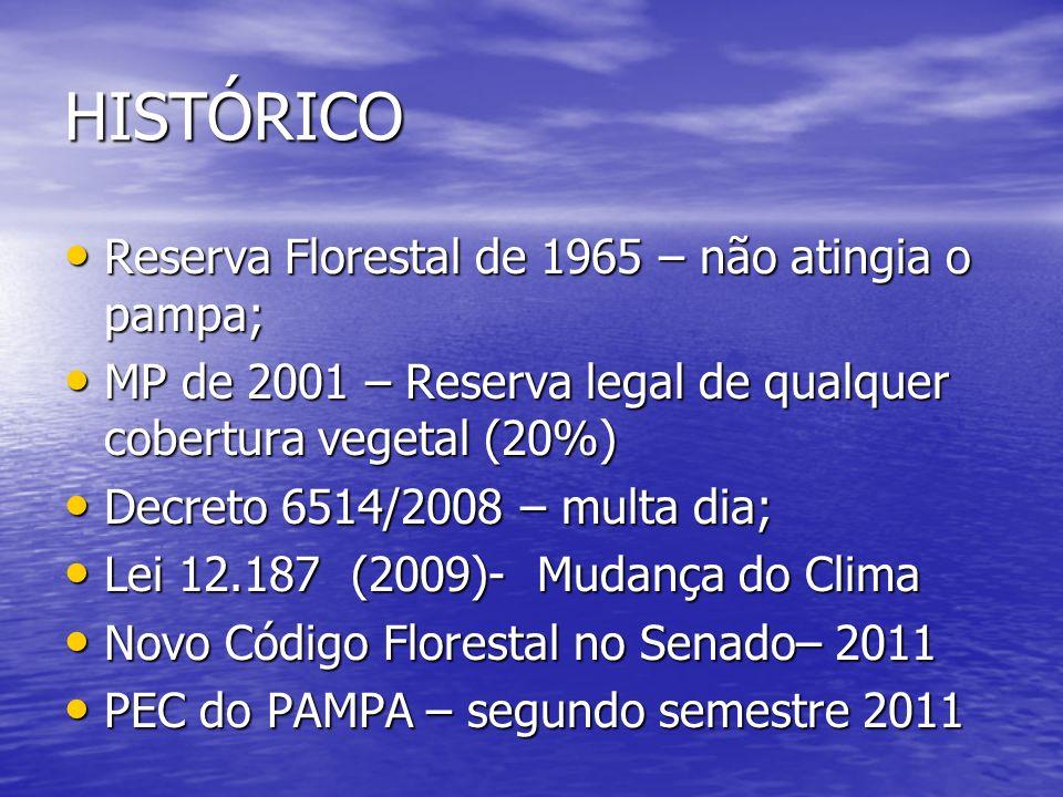 HISTÓRICO Reserva Florestal de 1965 – não atingia o pampa;