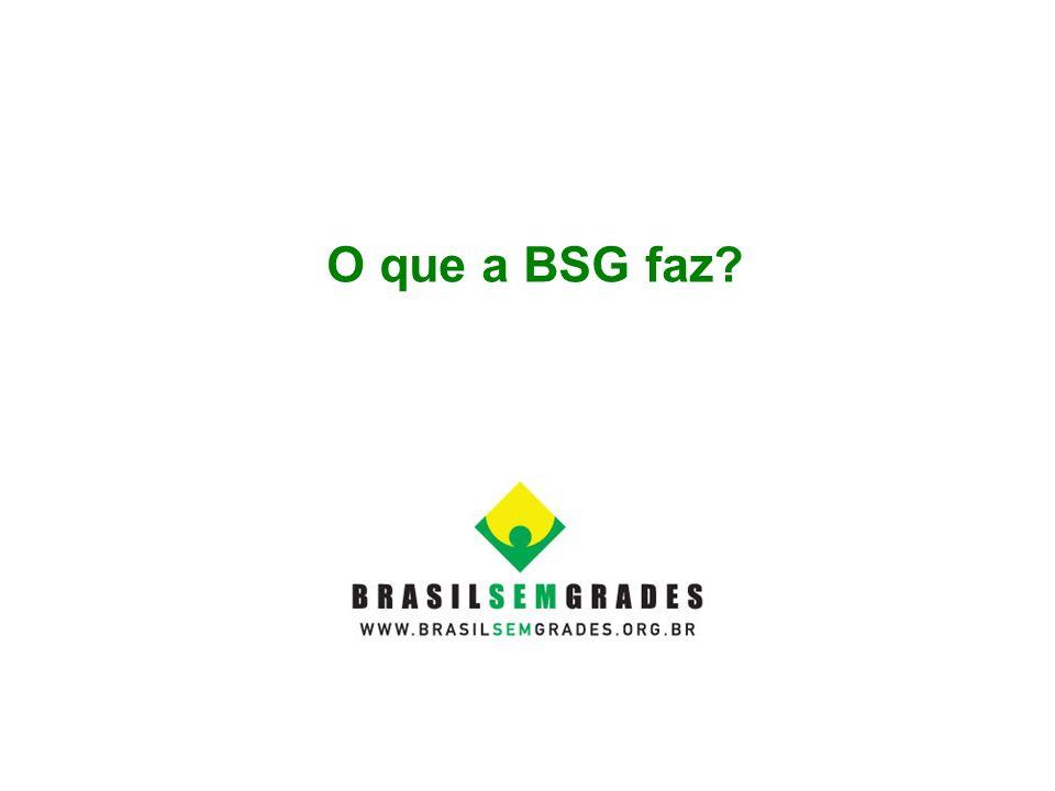 O que a BSG faz