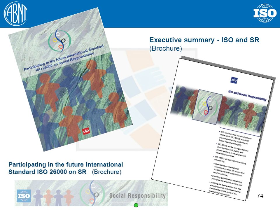 Executive summary - ISO and SR (Brochure)